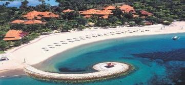 Bali-Tropic
